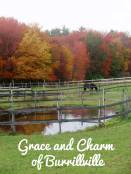 grace-and-charm-text